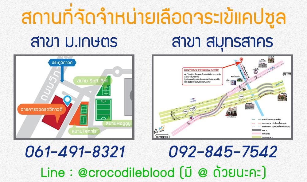 เลือดจระเข้แคปซูล_hemolysate_สถานที่จัดจำหน่าย_ฮีโมไลเสท